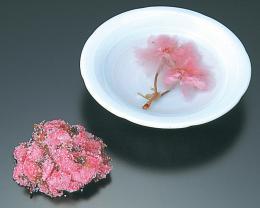 桜の花塩漬/関山赤 1kg   【常温】